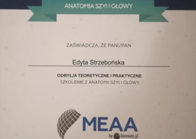 Medycyna-Estetycznaa4